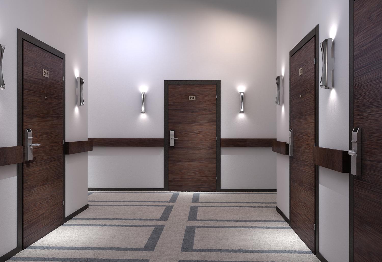 Входные двери в номера для гостиниц и отелей - фото № 3