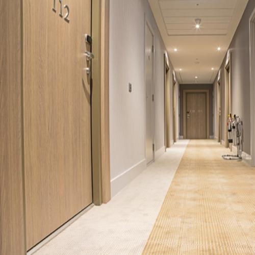 Входные двери в номера для гостиниц и отелей - фото № 6